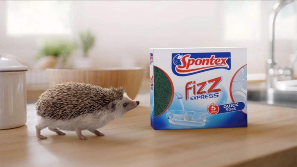 fizz-express-end-frame-hog-and-box